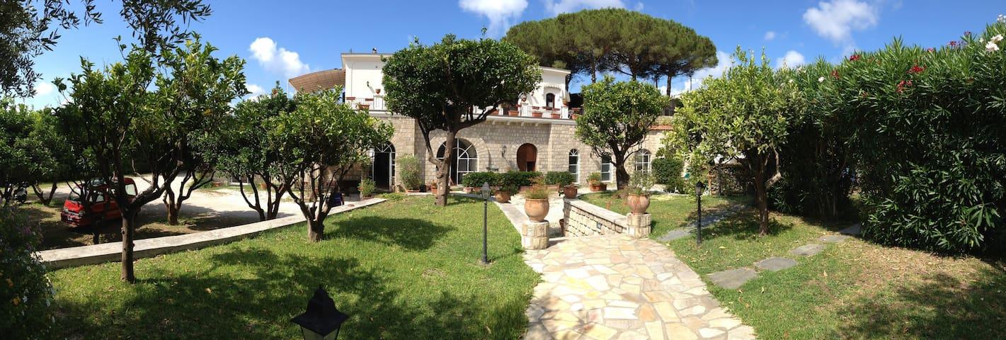Spazioso appartamento con piscina - Sant'Angelo - Wohnung