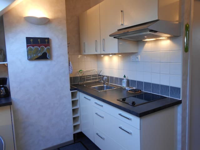 Charmant T1  meublé tout confort dans la verdure - Saint Jal - Appartement