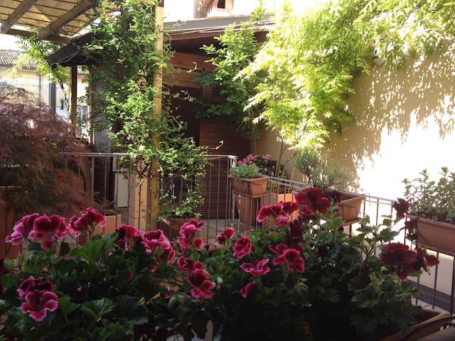 Bilocale in Centro Storico a Faenza - Faenza - Ev