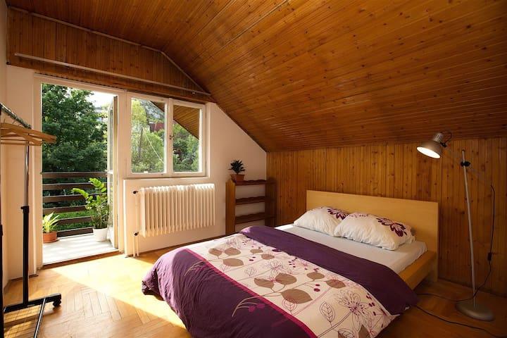 Room+Wifi+Balcony+GardenNearCenter2 - Budapest - Rumah