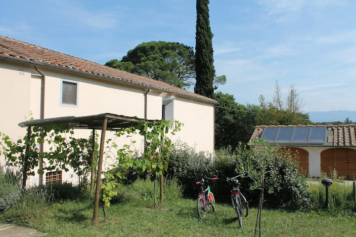 Appartamento in campagna in toscana - Pogi - Appartement