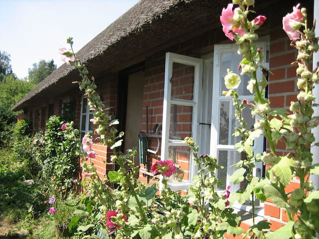 Idyllic country house with WiFi - Sakskøbing