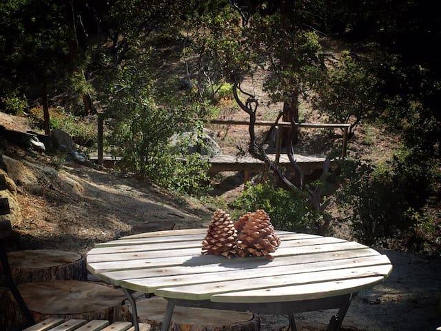 Idyllwild Mountain Casita - Idyllwild-Pine Cove - 캠핑카