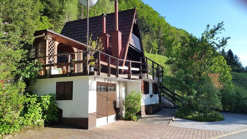 Lovely cottage in a green valley - Polhov Gradec