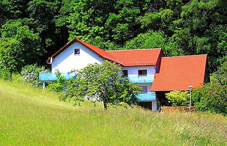 Erholung pur direkt am Waldrand - Wald-Michelbach - Lägenhet