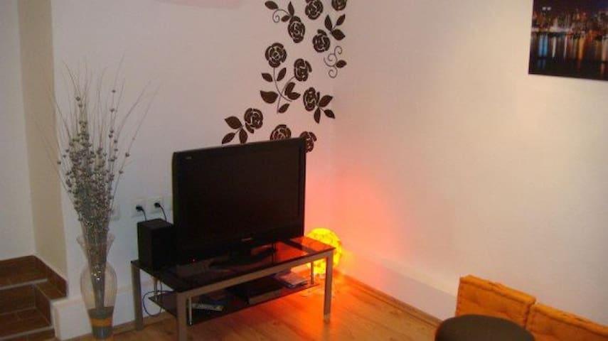 Studio in the center of Samobor - Samobor - Appartement