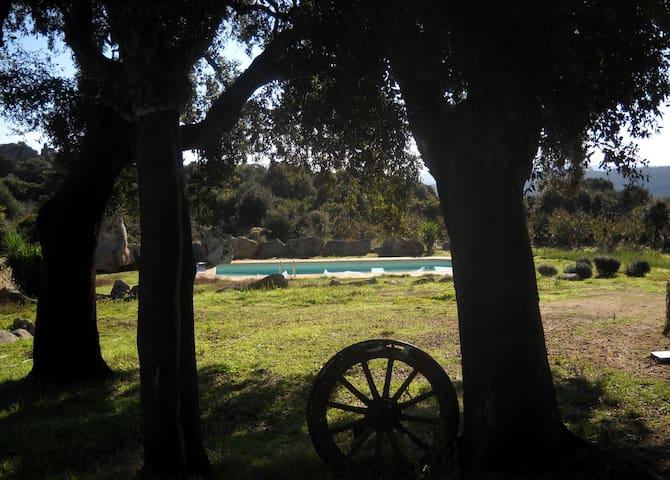 Landhausvilla Balaiana - Luogosanto - Villa