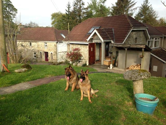 Country Paradise, Rural escape - Shillelagh