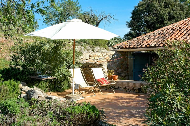 Authentic house in the vineyards - Saint-Chinian - Ev