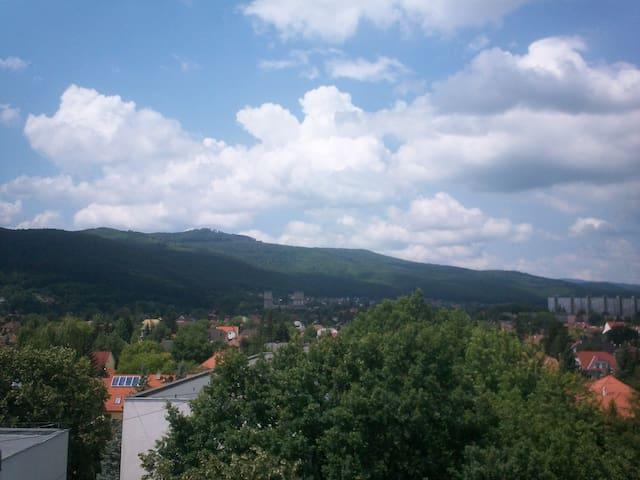 Kilátással a Diósgyőri várra - Miskolc - Huoneisto
