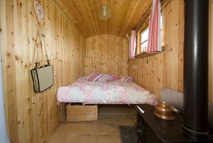 Shepherds Hut,set in rural location - Liskeard