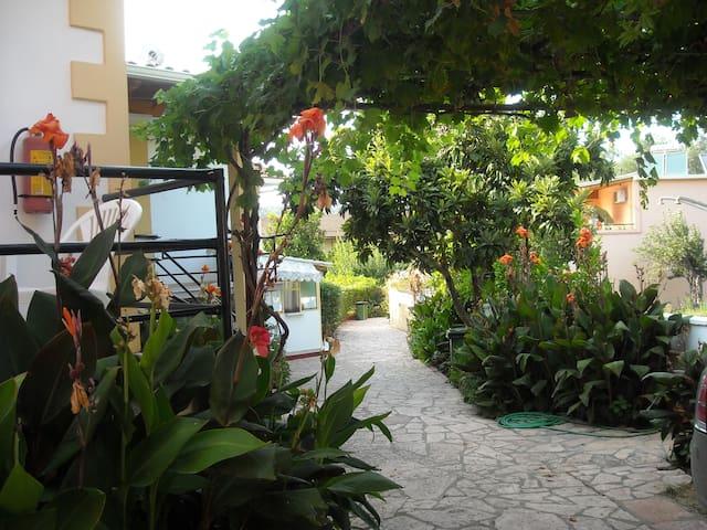 Apartment in a beautiful garden - Korfu - Huoneisto