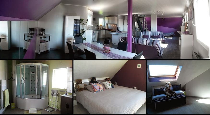DUPLEX STANDING+ SERVICES /GARDERIE - Uhlwiller - Apartamento