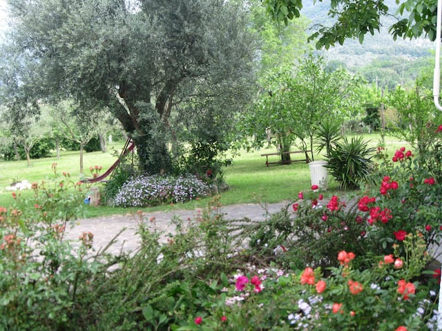 LANCON  B e B-TWO ROOMS WITH PERSONAL BATHROOM - Piedimonte Matese - Bed & Breakfast