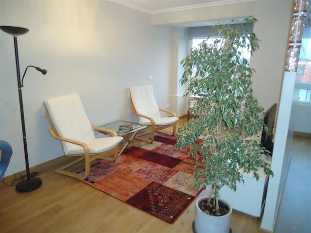 Cosy apartment 3 min from the beach - Santander - Lyxvåning