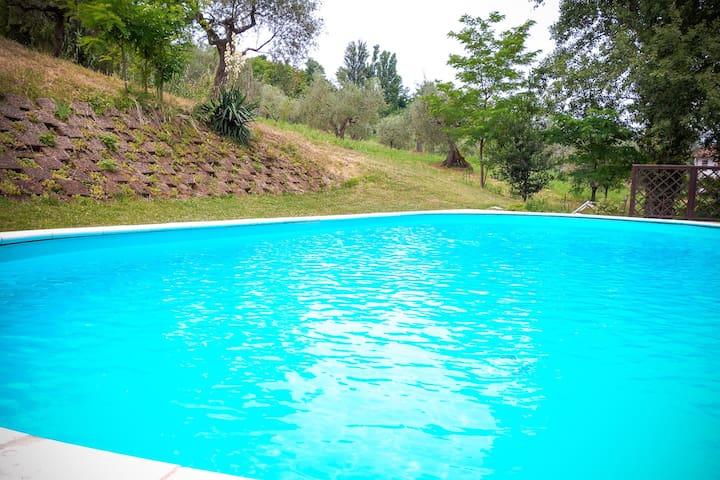 CountryInn swimming pool Restaurant - Saludecio - Bed & Breakfast