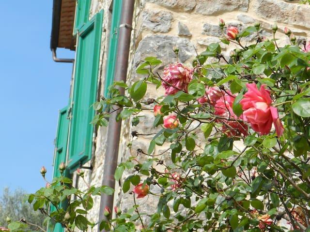 """""""Il Piastraio"""" con terrazza - Borgo A Mozzano - Leilighet"""