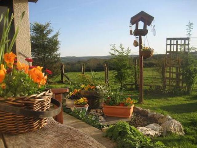 Peaceful smallholding lovely views - Llangoedmor - Bungalow