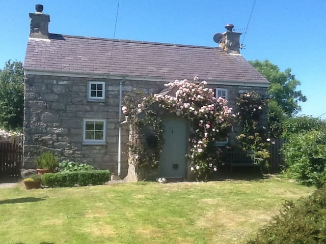 Comfortable 19th C farmhouse - Penmon - Bed & Breakfast