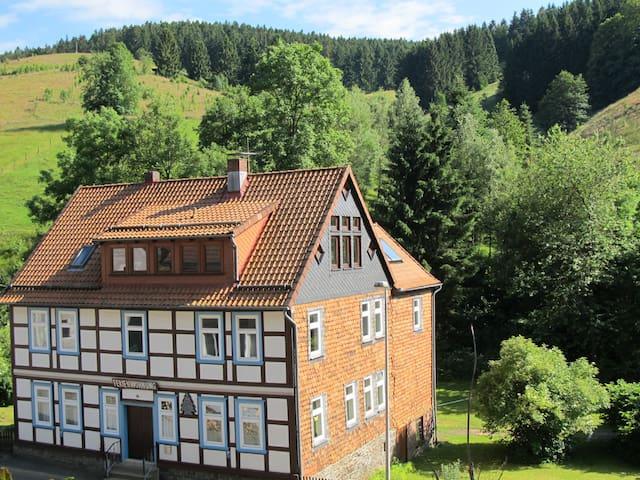 Hexenstieg House Lerbach - Osterode am Harz - Lejlighed