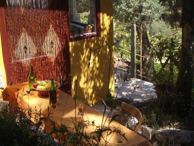 Cozy apartment in  a bamboo garden. - Póvoa de Midões - Apartemen