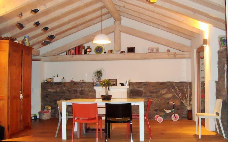 Stone cottage - original but modern - Miglieglia - Hus