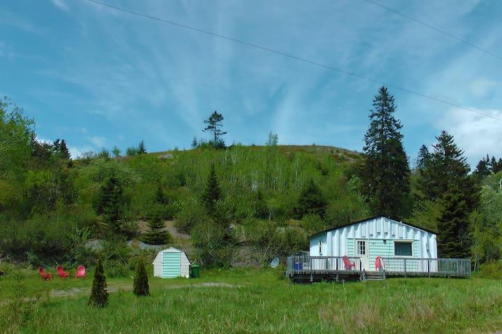 Brook Cottage, serenity on 5 acres! - Port Greville - Бунгало