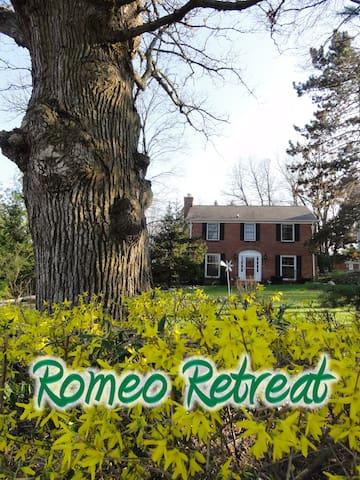 Romeo Retreat - Checkered Room - Romeo - Дом
