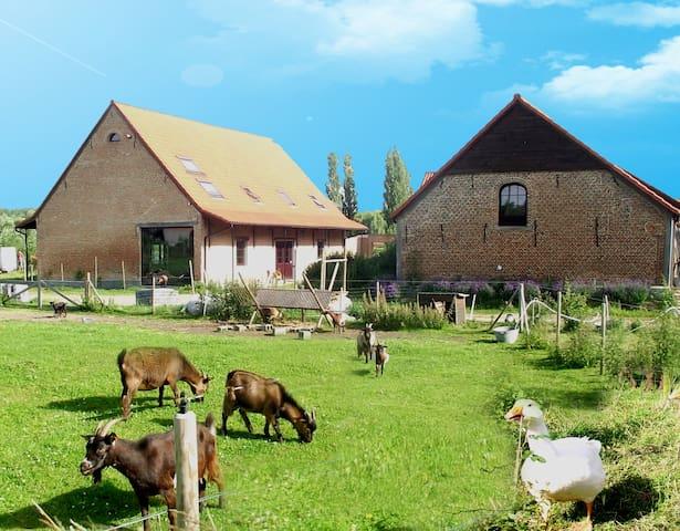 De Plukboerderij 2 to 19 pers - Schelle