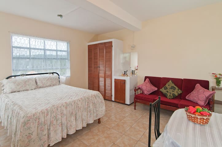 Large Studio Apartment with Private balcony - Becke Moui - Appartement