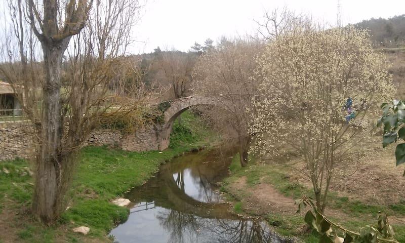 Rural appartment in Castellterçol - Castellterçol - Квартира