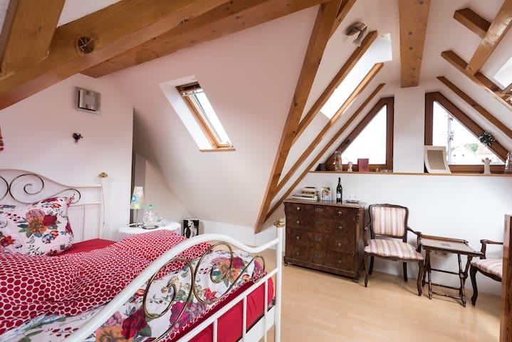 Galerie/Maisonette im Sandsteinhaus - Bad Dürkheim - Casa