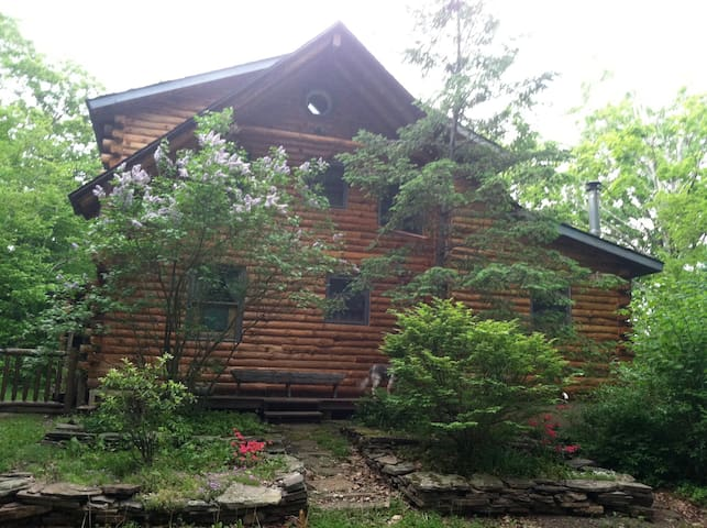 SECLUDED LOG HOME NEAR WINDHAM, NY - East Jewett - Chalet