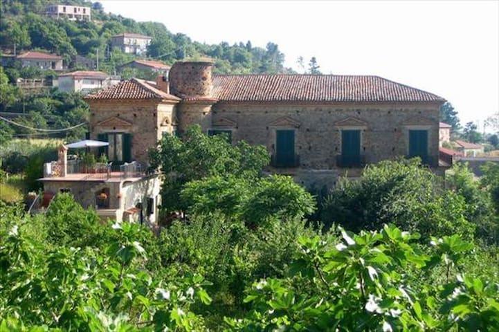 Vicino Acciaroli, in palazzo baronale fine '700 - Serramezzana - Apartamento