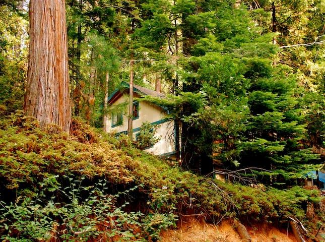 Sierra Mountain House with Hot Tub! - Mi-Wuk Village - Maison