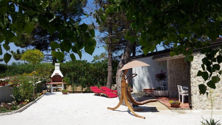 Casa Zara - bungalow in Privlaka - Privlaka