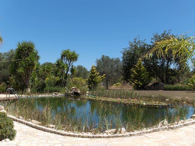 "Romantic ""Casita"" with natural pool - São Brás de Alportel - Hus"