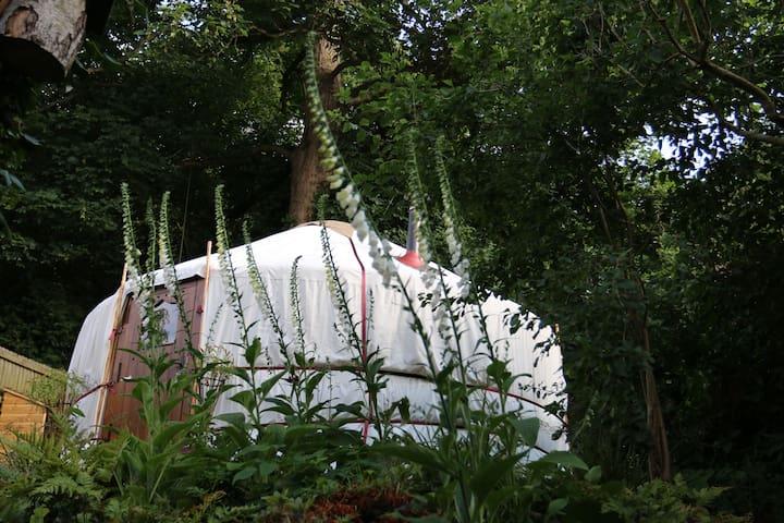 Garden Yurt less than 1hr from London - Aspley Guise