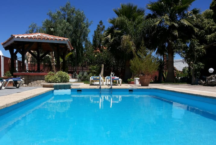 An Oasis with private pool - Güimar - Apartmen