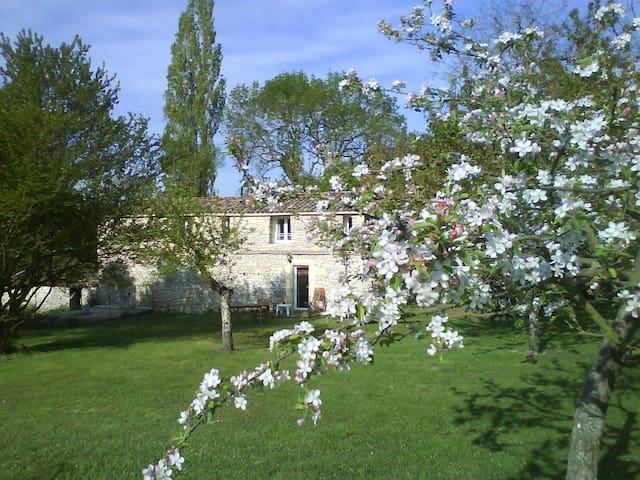 L'Authentique en Périgord cheminée - Naussannes