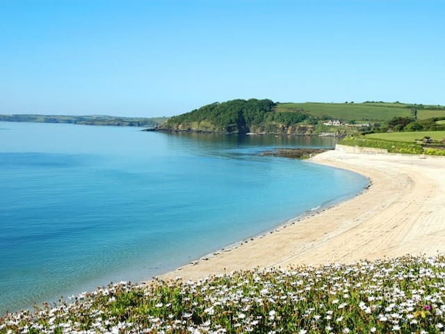 Stunning Sea View Apartment - Falmouth - Leilighet