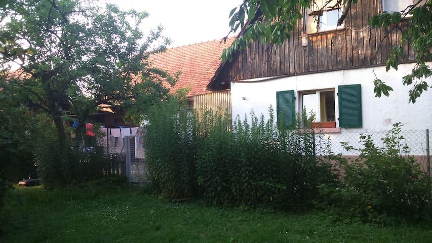 gemütliches Häusschen à la Bullerbü - Freiburg im Breisgau - Ev