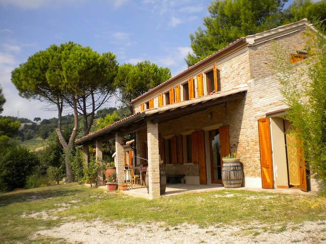 Casa immersa in verdi olivi - Serrungarina Pesaro