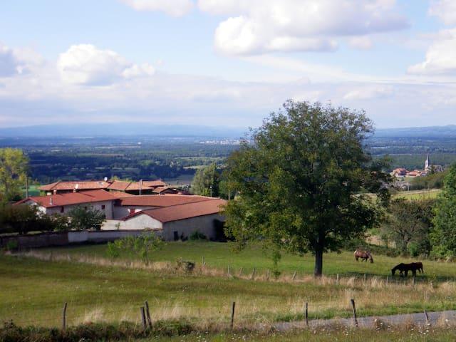 La Martinière  : ancienne ferme - Saint-Cyr-les-Vignes - Casa