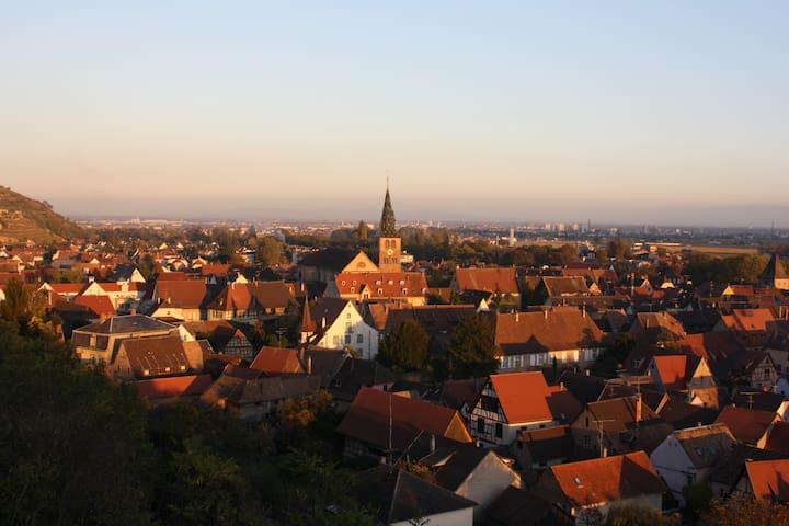 Au coeur du vignoble Alsacien - Turckheim - Дом