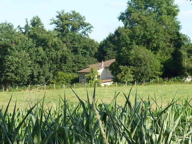 Charming farmhouse in a big garden - Laurière - Lägenhet