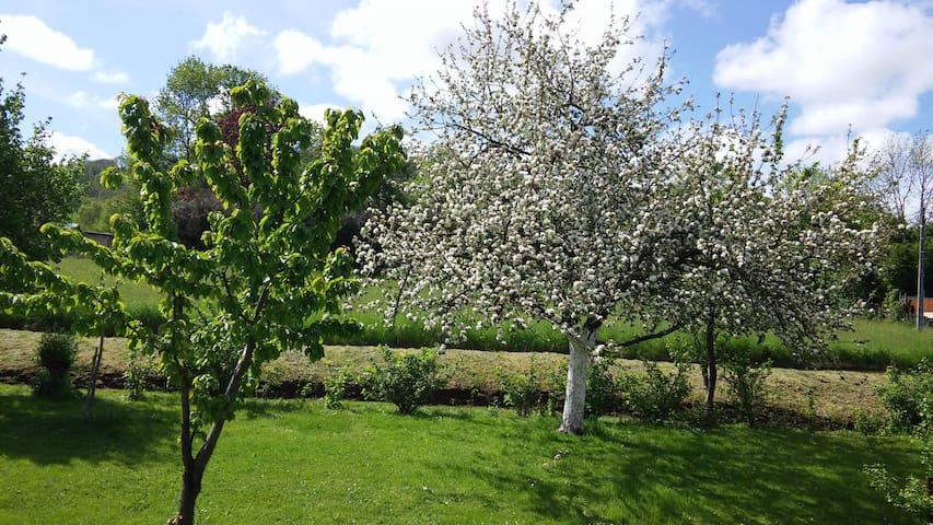 Maison avec grand jardin - Saint-Siméon-de-Bressieux - Дом