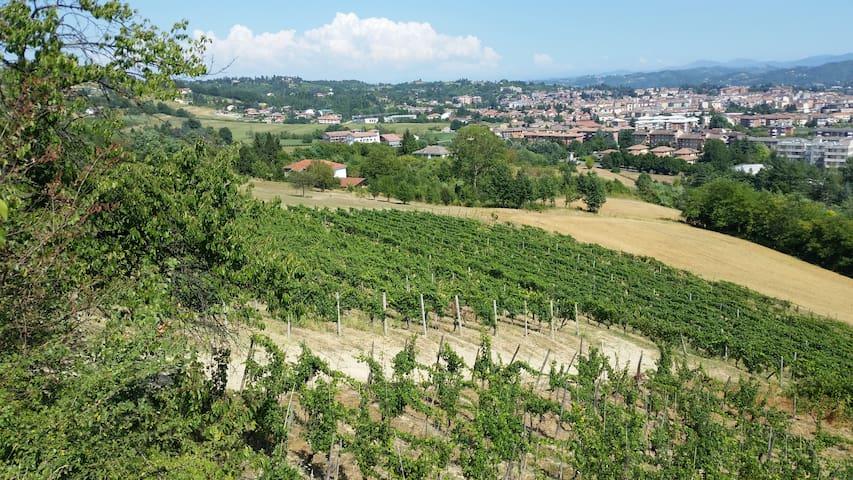 Relax tra i vigneti del Monferrato - Acqui Terme