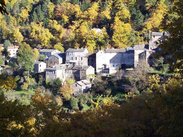 Appt. en centre Corse, Saliceto - Saliceto
