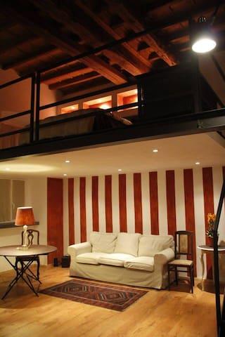 LOFT  QUADRILATERO TORINO CENTRO  - Turin - Loft
